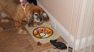 Sweetie enjoying her Halloween Pup cake