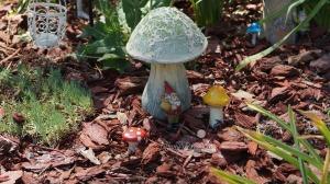 Fairy Garden (2)
